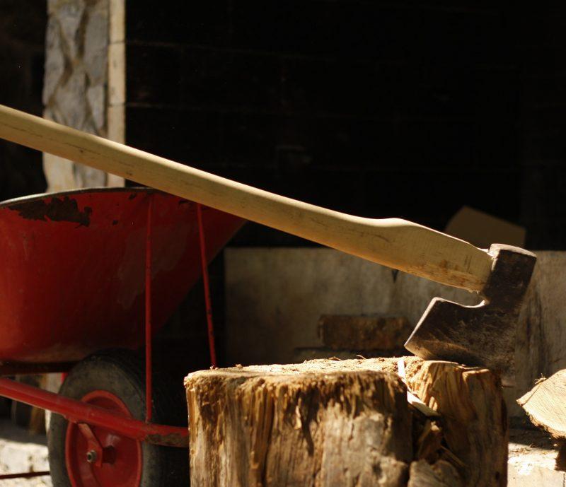 Træbeskæring / Beskæring af træer